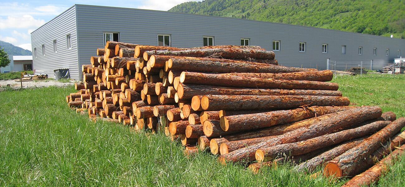 Essences de bois
