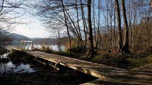 platelage-bois-lac-saint-helene