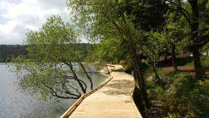 aménagement platelage bois bouchet