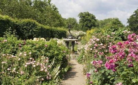 Les r flexions pour bien am nager un jardin dynamique for Amenager un jardin anglais
