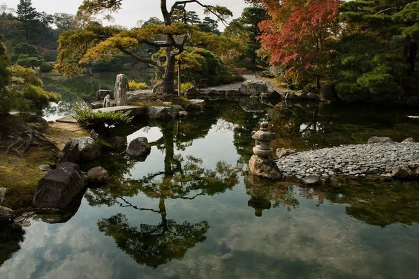 Jardin asiatique dynamique environnement - Jardin asiatique ...