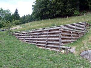 murs bois paysagers en mélèze